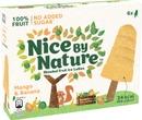 Heartbrand Nice By Nature Monipakkaus Mango & Banaani 6X40ml/252G