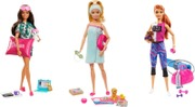 Barbie Wellness Doll Gkh73