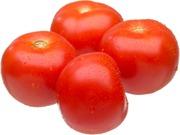 Varpion Tomaatti