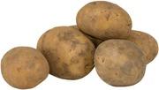 Kiinteä peruna harjattu