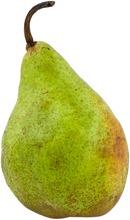 Päärynä Xenia I Hollanti