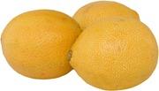 Sitruuna bergamotto