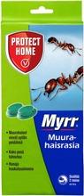 Myrr Muurahaisrasia 2Kpl
