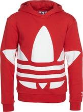 Adidas Bg Trefoil Hood...