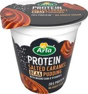 Arla Protein Bcaa Vanukas Suolainen Kinuski 200G Laktoositon