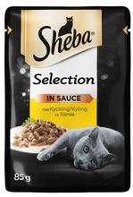 Sheba Selection Kanaa 85G