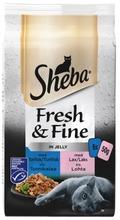 Sheba 6X50g Fresh&Fine Kalalajitelma Hyytelössä Msc