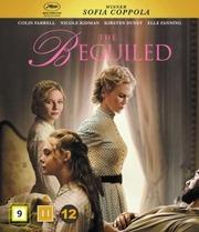 Blu-Ray Beguiled - Lumotut