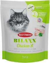 Best Friend Bilanx Vil...