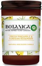Botanica Tuoksukynttilä Pineapple 205G