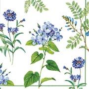 Asp 25 Cm Lautasliina Rhapsody White Blue