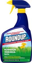 Roundup 1L Nurmikon Voikukkahävite