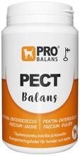 Probalans 180G Pectbalans Maitohappobakteerivalmiste Koirille