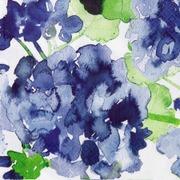 Pentik Havi Tissue Lautasliina Pelargonia Sininen 24Cm 20Kpl