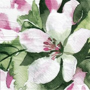 Pentik  Lautasliina Tissue Omenankukka Vaaleanpunainen 33Cm 20Kpl