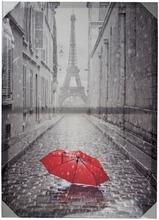 House Paris canvastaulu 50x70cm