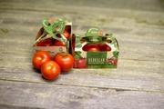 Härkälän Puutarha Tomaattirasia