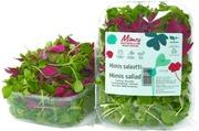 Mimis 70G Salaatti