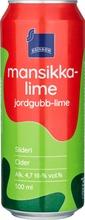 Rainbow 0,5L Mansikka-...