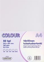 Teehoo Värillinen Tulostuskartonki A4 50Kpl