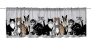 Vallila Kitties 60X250...