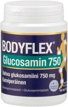 Glukosamiinitabletti 1...