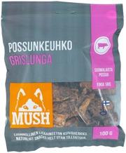 6X Mush Snacks Possun Keuhko 100G