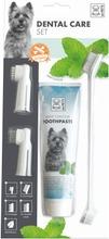 Koiran hammashoitosetti
