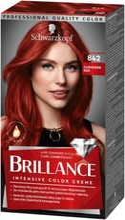 Schwarzkopf Brillance 842 Cashmere Red  Hiusväri 1 Kpl