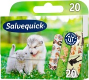 Salvequick Animal Plan...