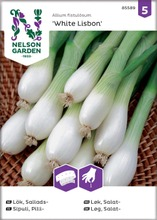 Sipuli, pilli-, white lis