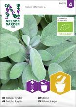 Salvia, ryyti-, organic