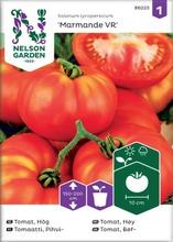 Tomaatti, pihvi-, marmand