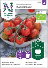Nelson Garden Siemen Tomaatti, Zuckertraube, Luomu