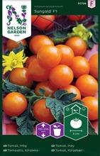 Nelson Garden Siemen Tomaatti, Kirsikka-, Sungold F1