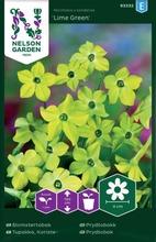 Nelson Garden Siemen Tupakka, Koriste-, Lime Green