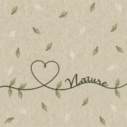 Duni Paper+ Design 33Cm 2-Krs Naturals Love Of Nature Lautasliina 25Kpl