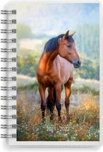 Burde Koulukalenteri 21-22  Compact Pets, Fsc Mix
