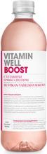 500Ml Vitamin Well Boost Mustikan Ja Vadelman Makuinen Vitaminoitu Hiilihapoton Hyvinvointijuoma