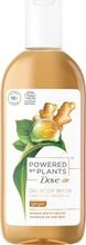 Dove Powered By Plants Suihkusaippua Ginger 250 Ml