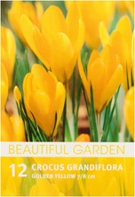 Kevätsahrami Golden Ye...