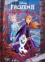 Frozen 2 Taikakansikirja