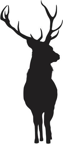 Forwall Sisustustarra Deer Spnb729ts
