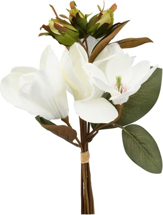 Koristekimppu magnolia 38 cm