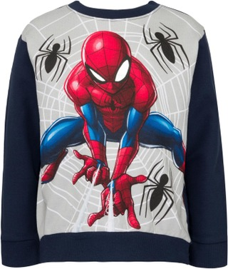 Spiderman Lasten Collegepusero Sp20013