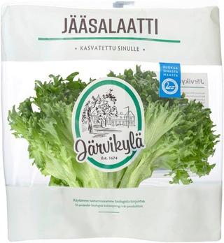 Järvikylä Min100g Jääsalaatti Pussi