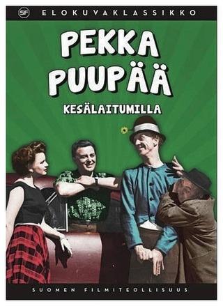 Dvd Pekka Puupää Kesälaitumilla