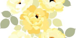 Vallila Vahakangas Michelle 145 Cm Keltainen