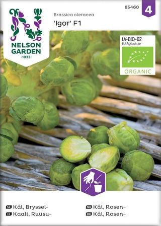 Nelson Garden Siemen Kaali, Ruusu-, Igor F1, luomu