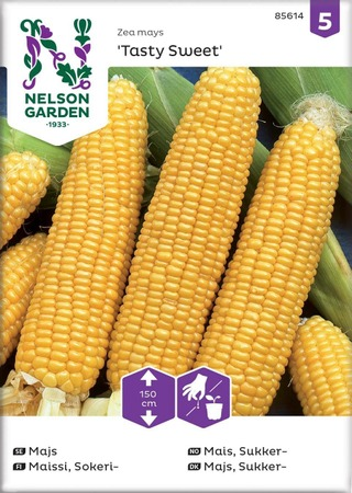 Nelson Garden Siemen Maissi, Sokeri-, Tasty Sweet F2